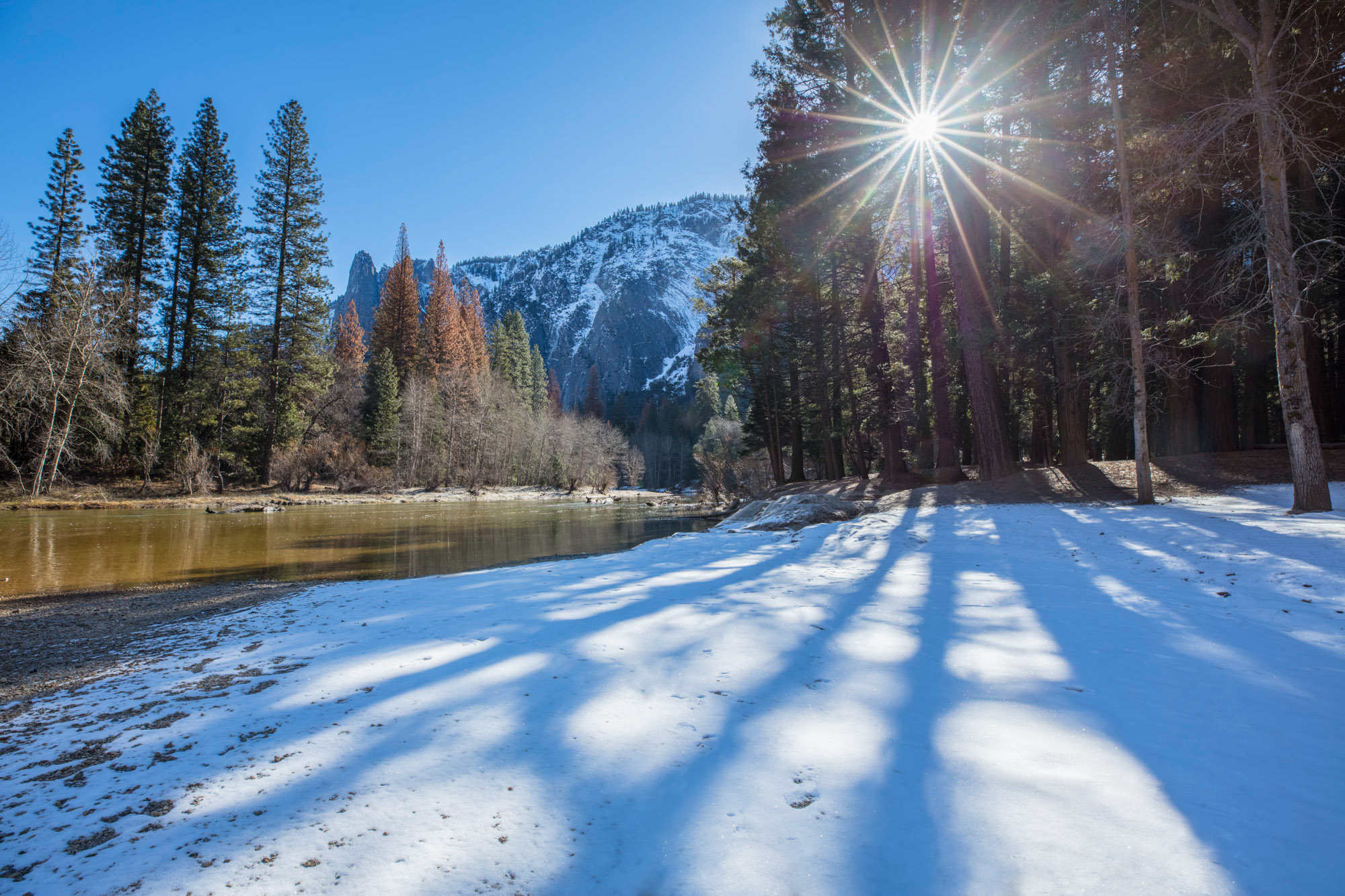 Light shining through the trees in Winter at Yosemite National Park, USA