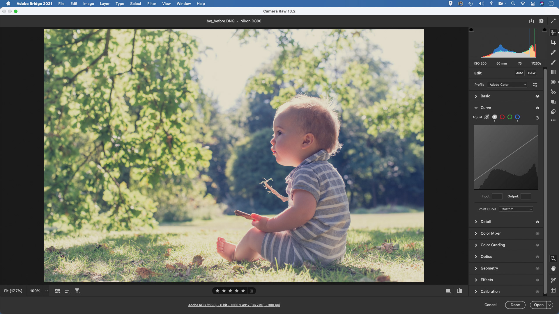 Creating the matte look with the Lightroom Camera Raw tone curve feature