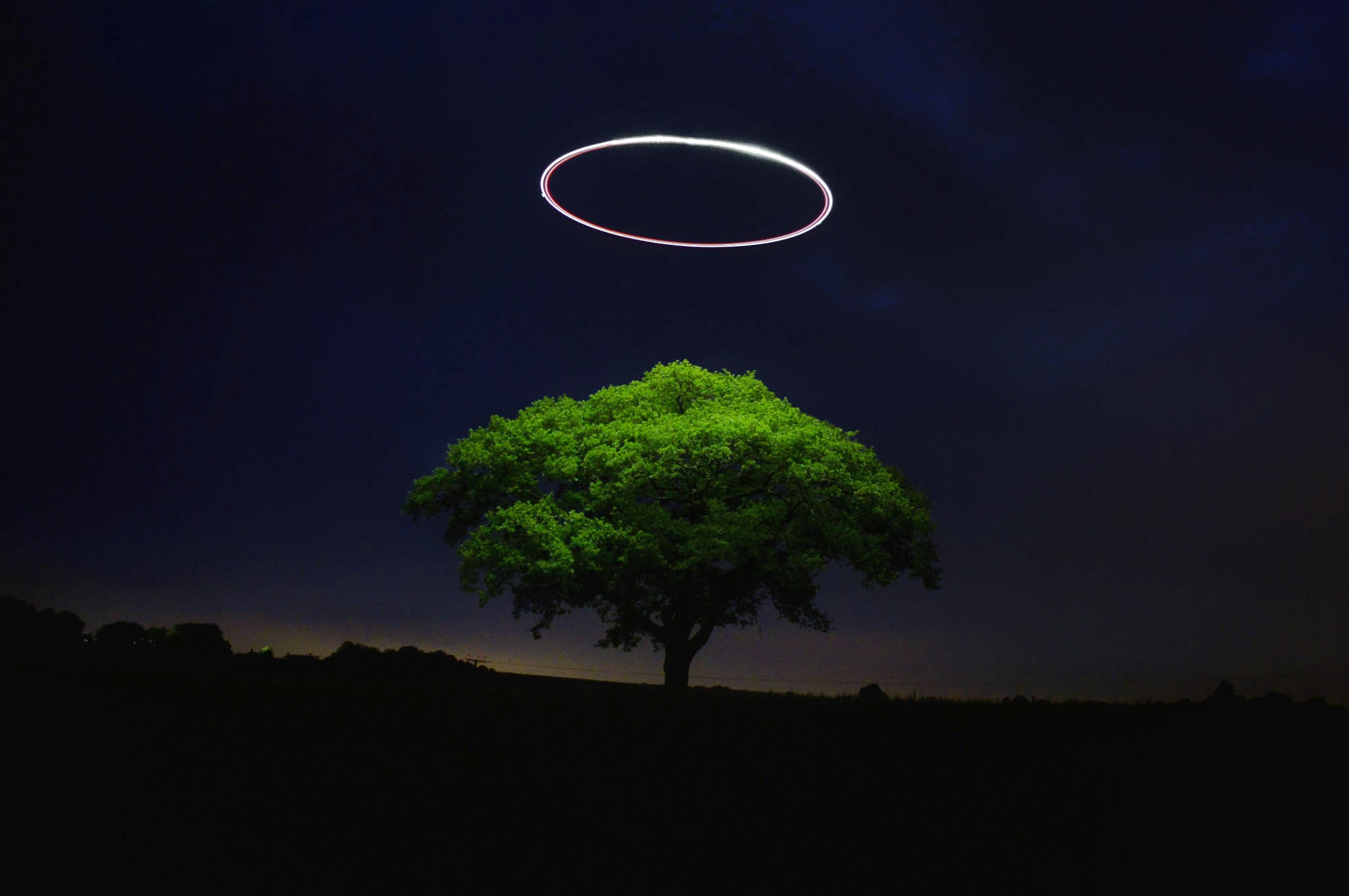 Light trails of a drone lighting up a tree at night