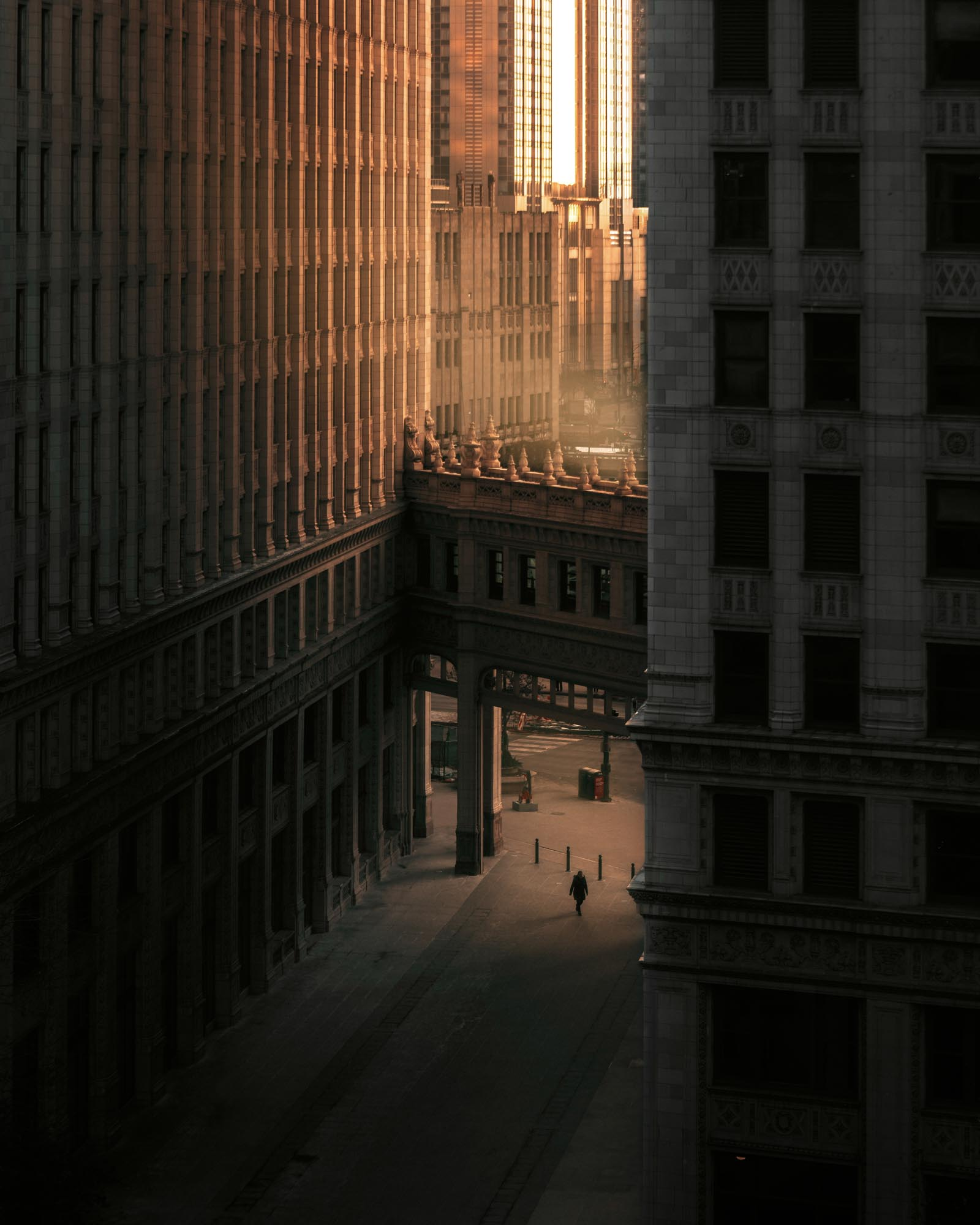 A man makes his morning commute in the golden light of morning, Chicago