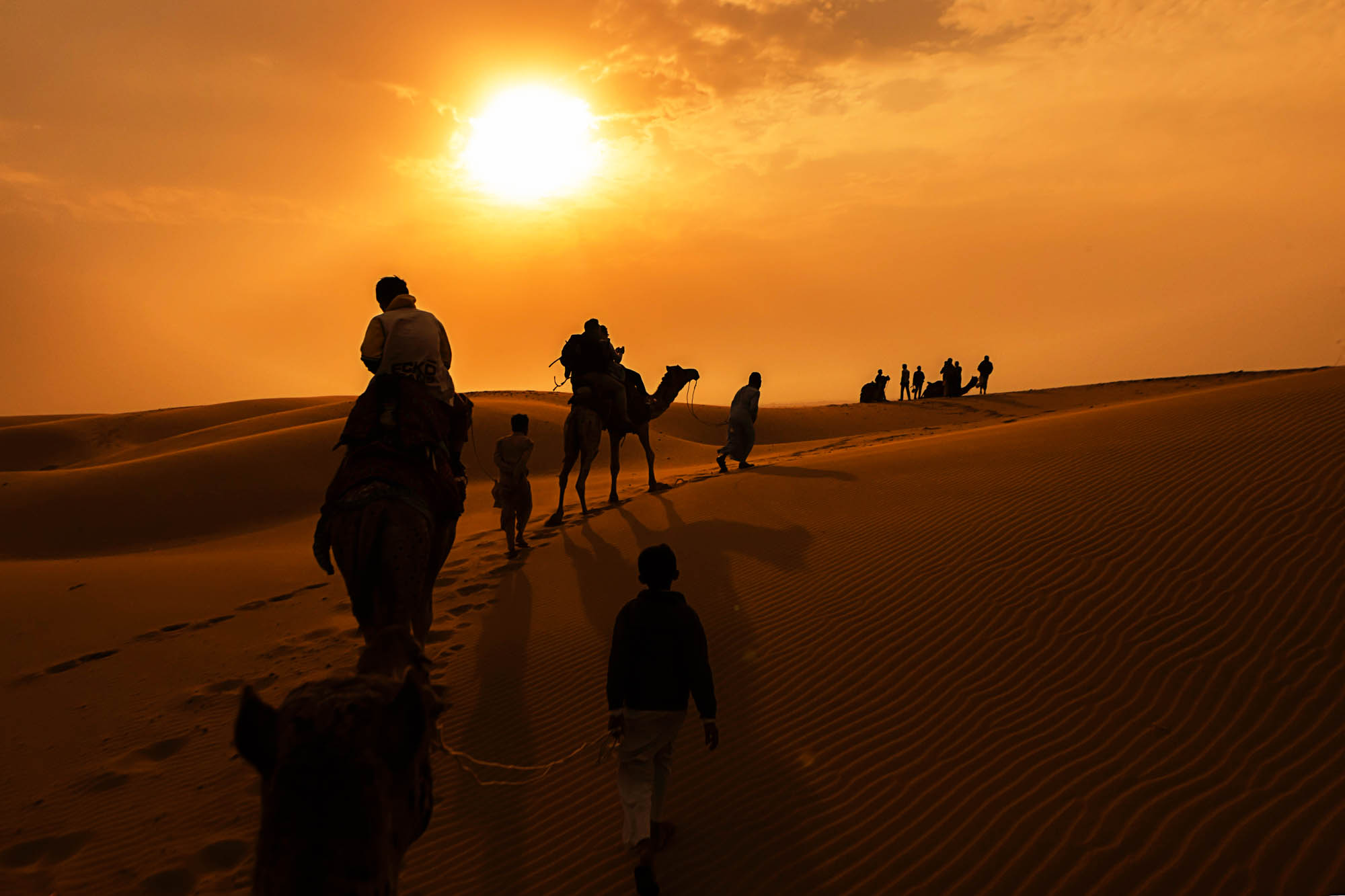 Camel rides in the Great Indian Desert, Jaisalmer, India.