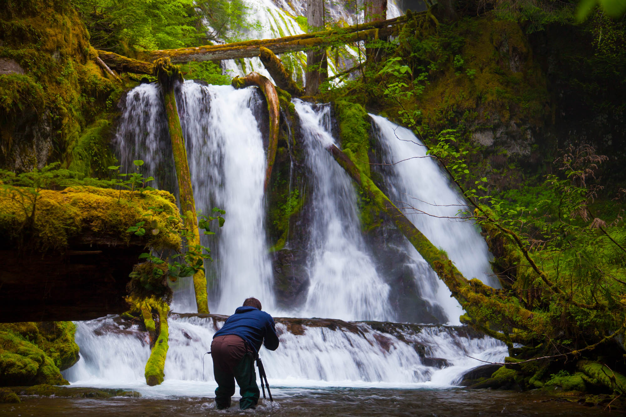A photographer takes a picture of Lower Panther Falls along Panther Creek near Carson, Washington.