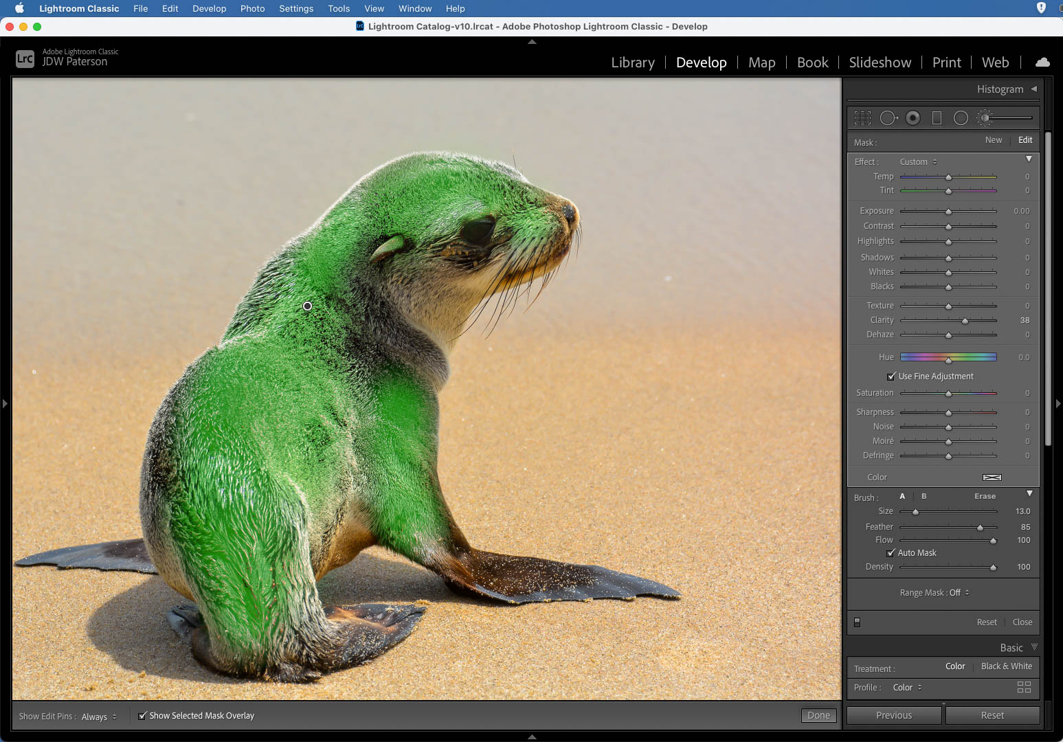 Painting with the Clarity tool as seen in Lightroom