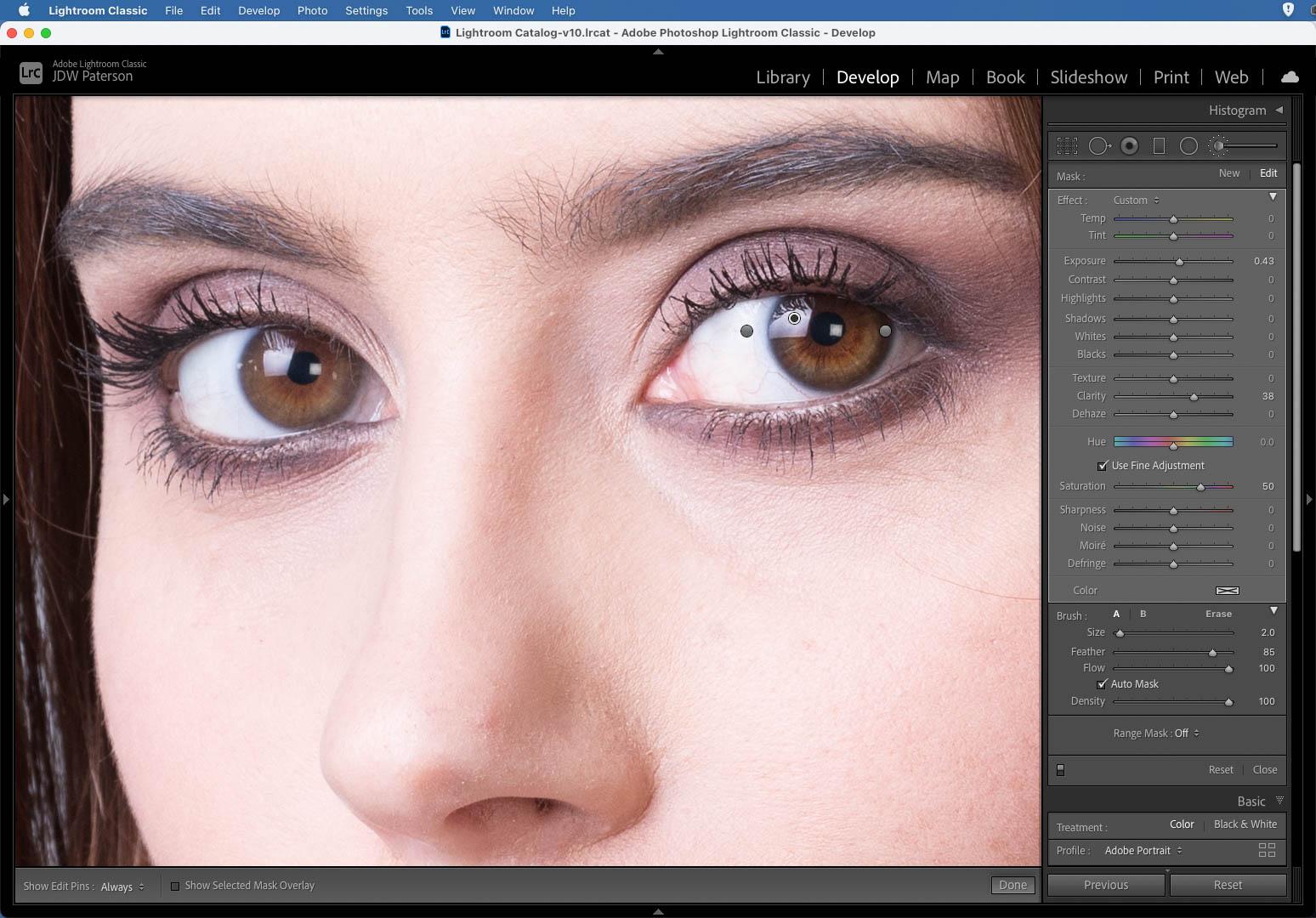 Using the Adjustment Brush in Adobe Lightroom
