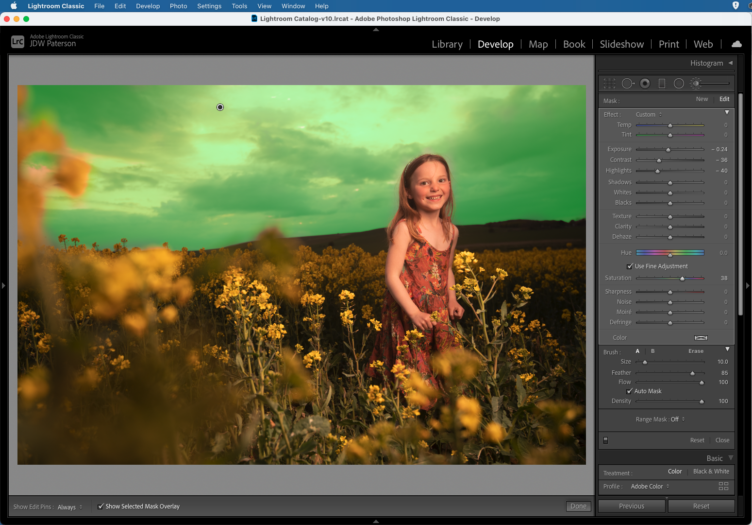 Screenshot showing the auto mask setting in Adobe Lightroom