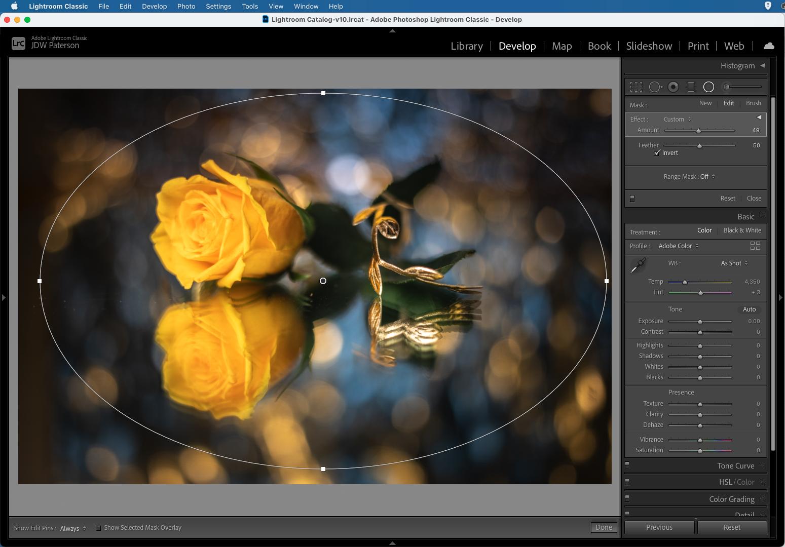 Screenshot showing the Amount slider in Adobe Lightroom