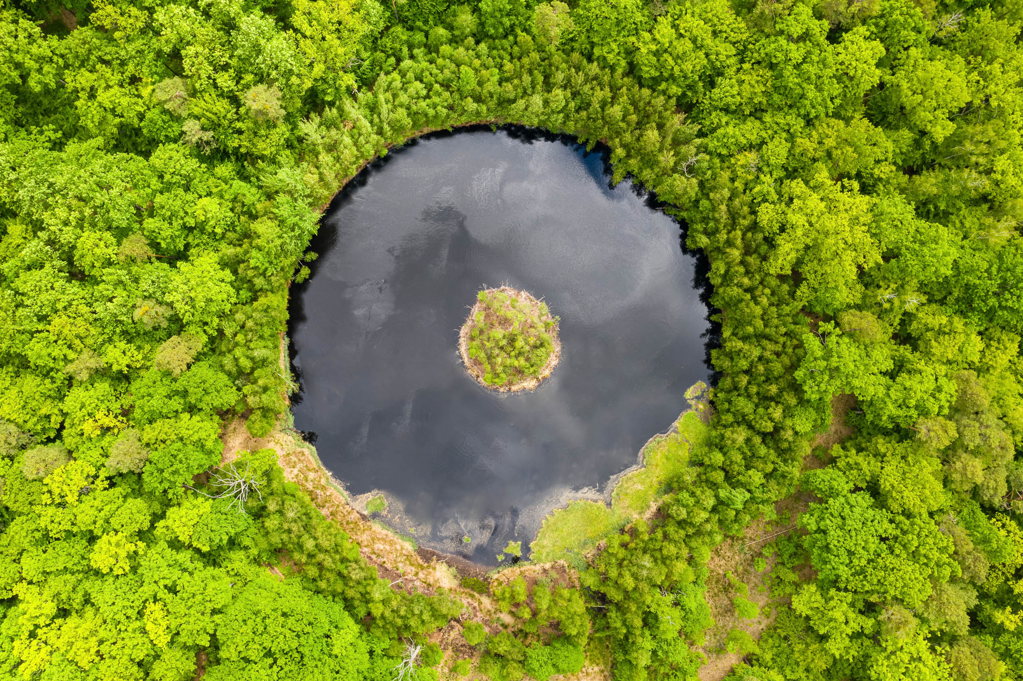 Round lake with island in the middle among forest, aerial view.