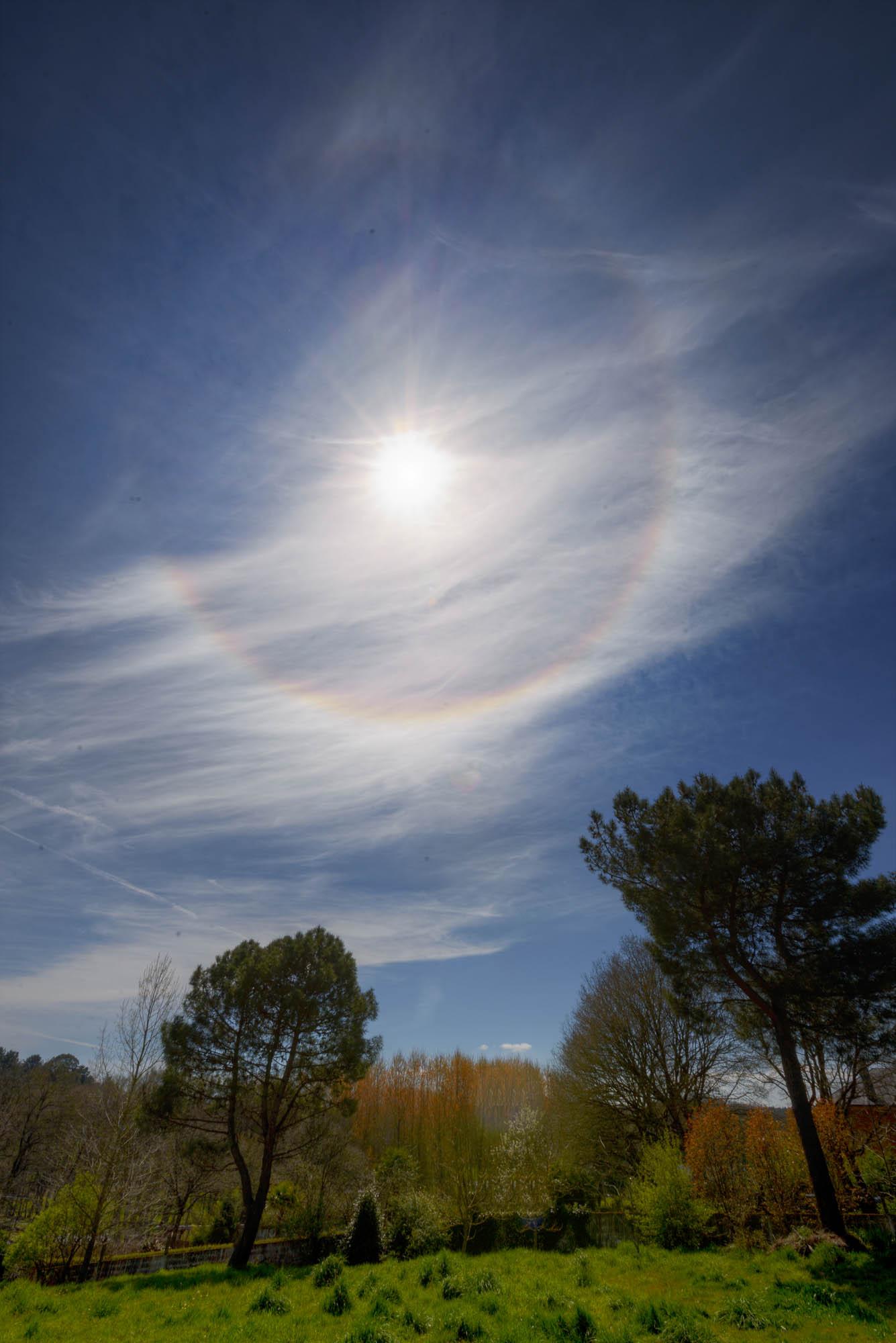 Atmospheric optical phenomenon called parhelion (sun halos) over a group of trees