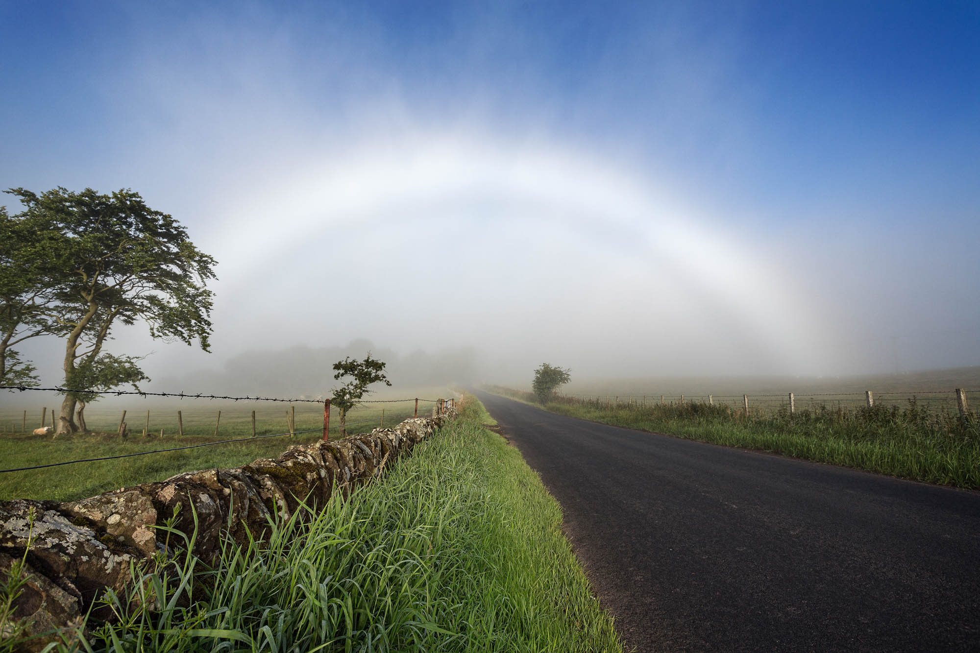 A white rainbow also known as a fogbow