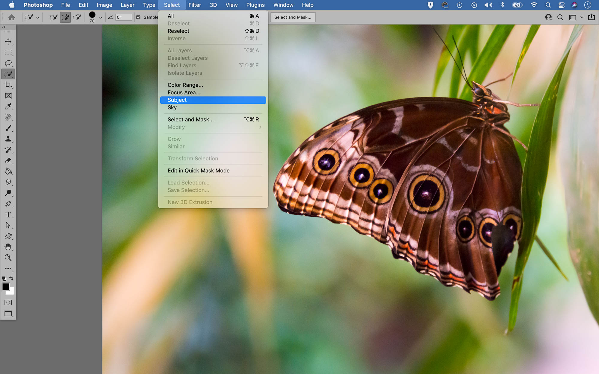 Screenshot showing Photoshop's Select Subject feature