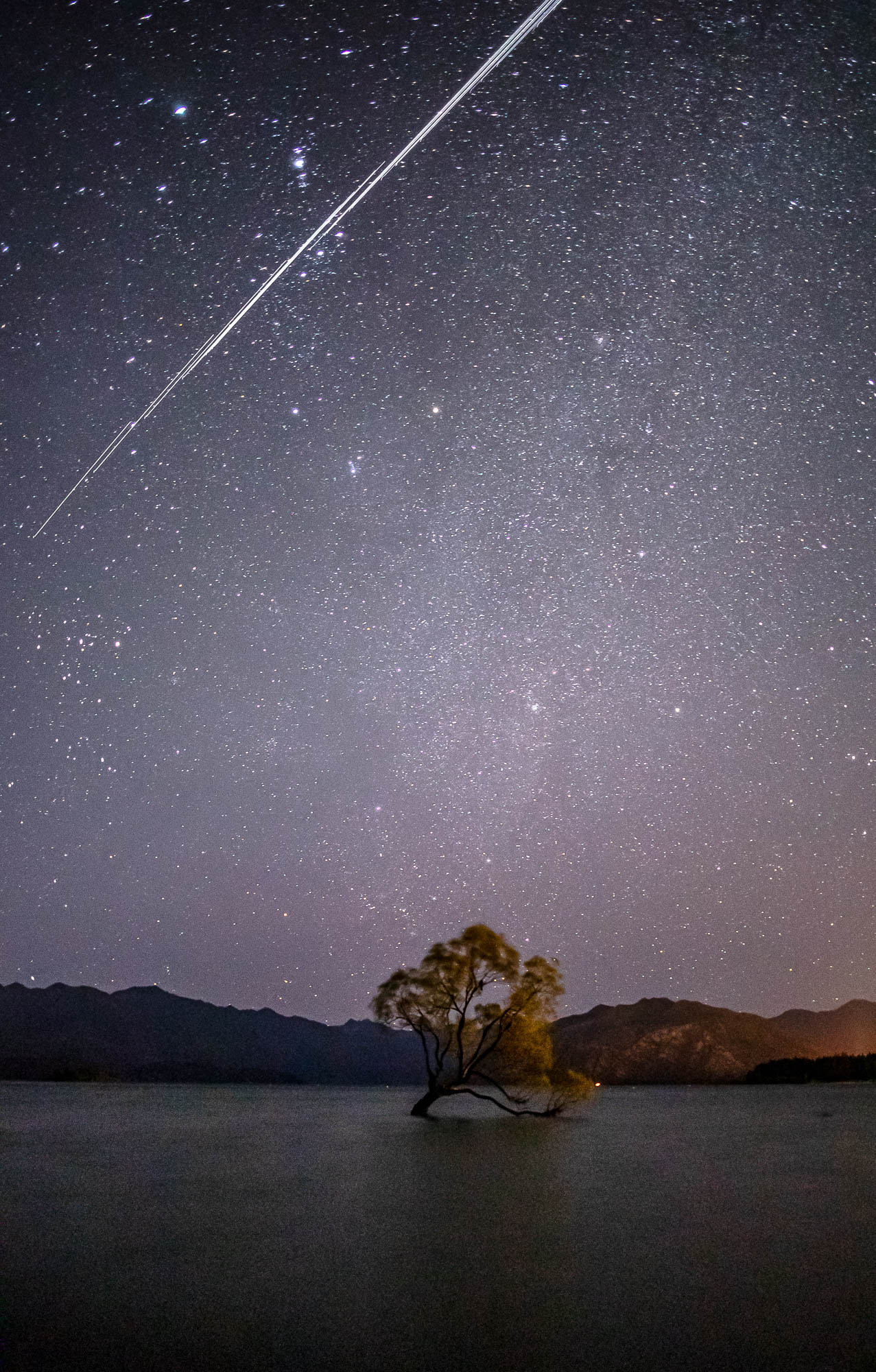The famous 'Wanaka Tree', New Zealand, lit up by a starlit sky SpaceX Starlink space stations passing above.