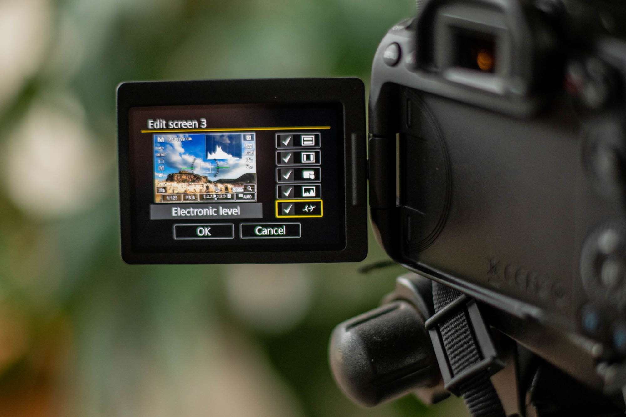 The electronic level feature displayed on the LCD screen of a digital camera