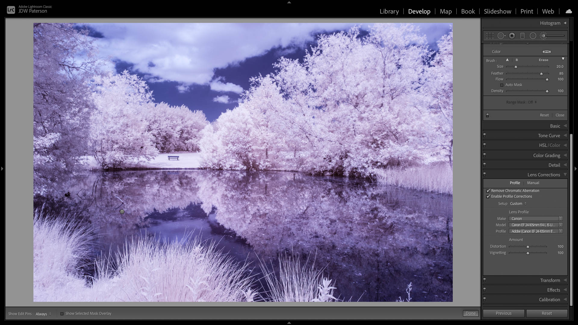Lightroom screenshot showing the Lens Correction panel to fix lens issues
