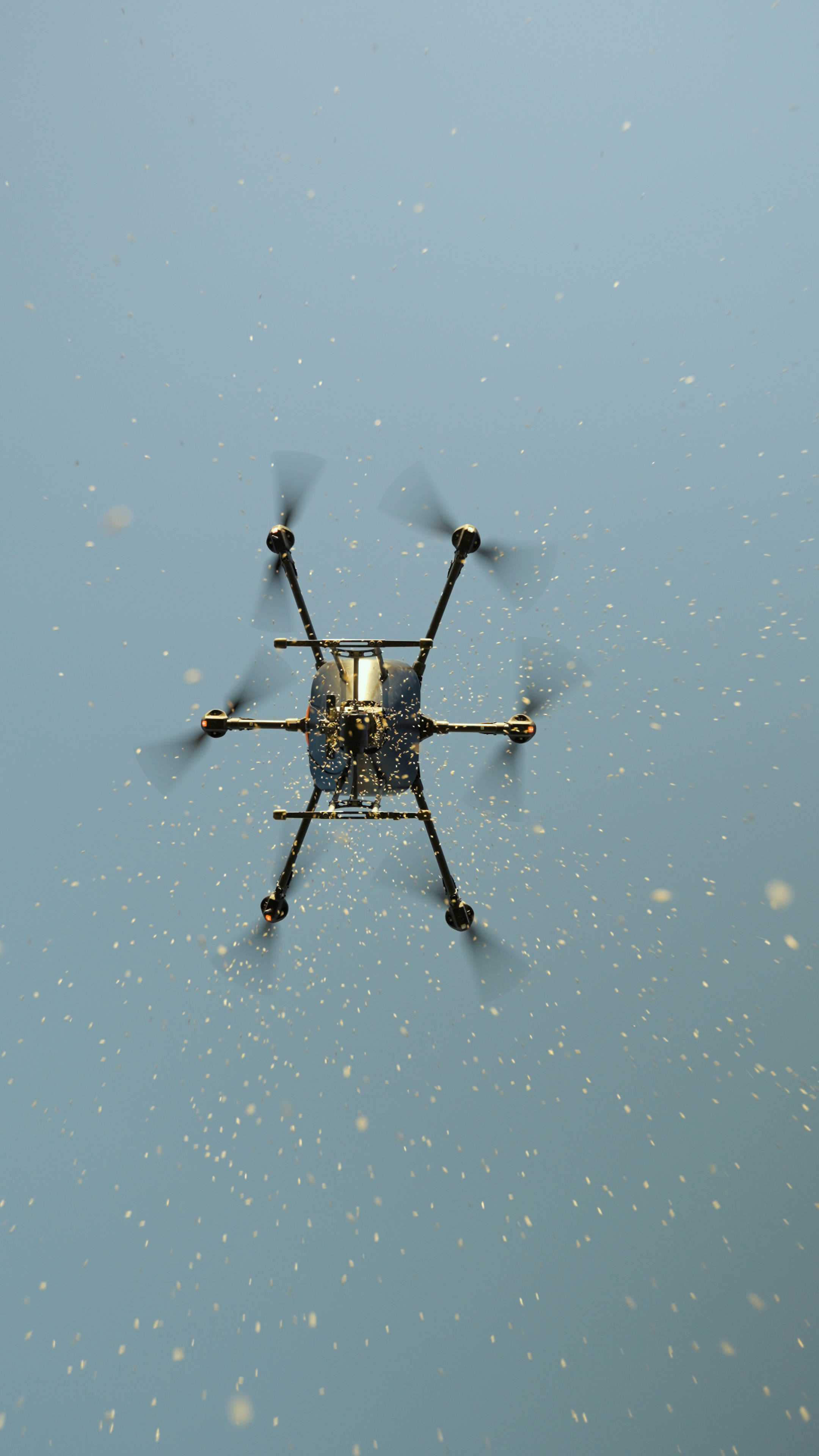 drone seeding
