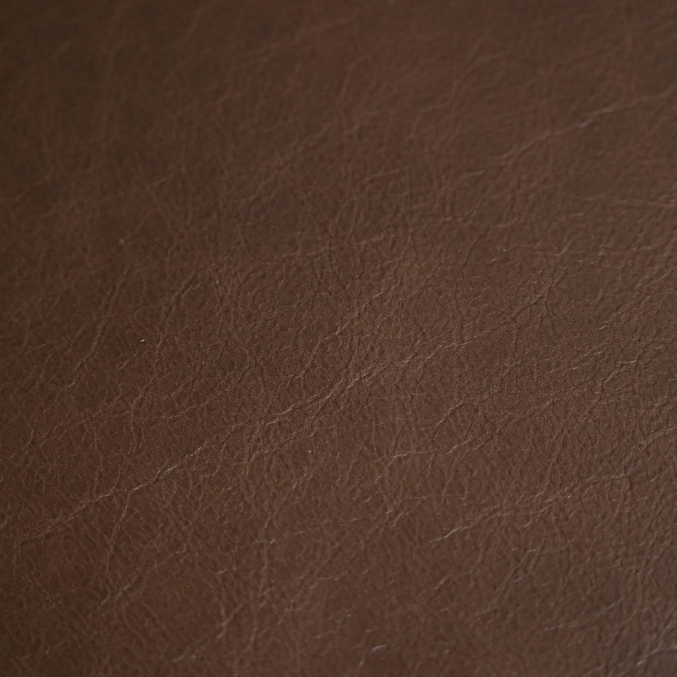 laguna leather in biscuit color