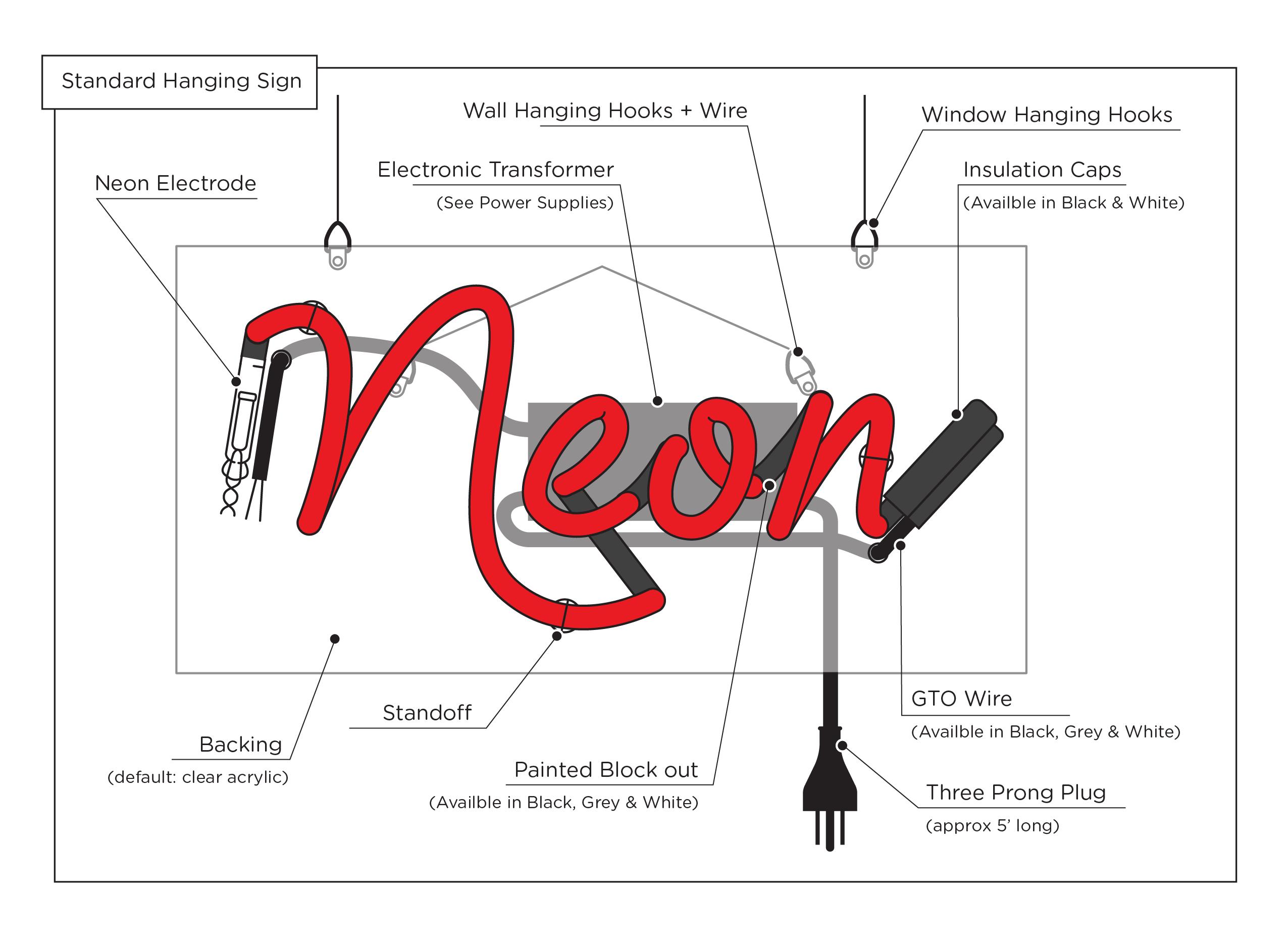 neon anatomy diagram 2