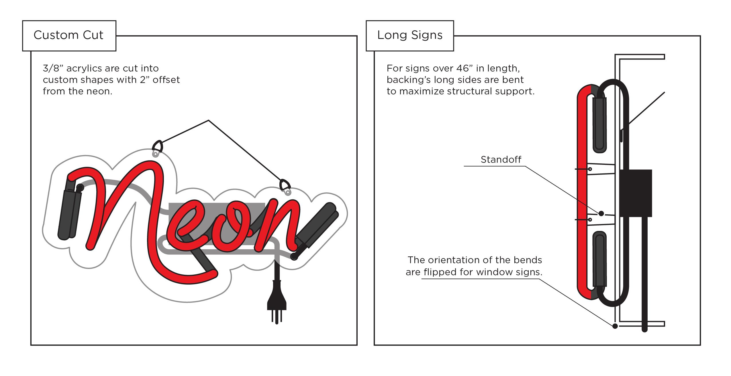 neon anatomy diagram 3