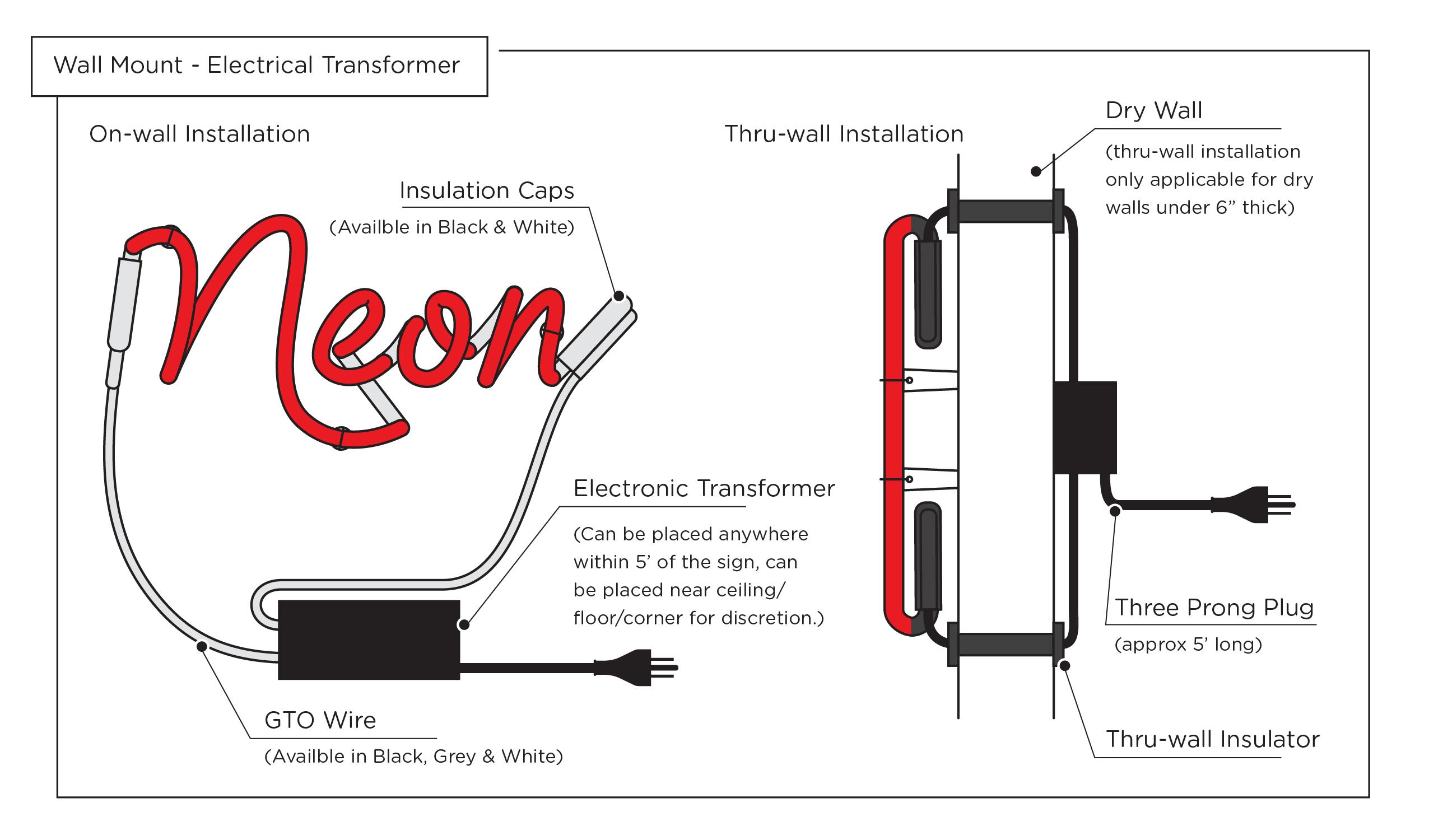 neon anatomy diagram 1