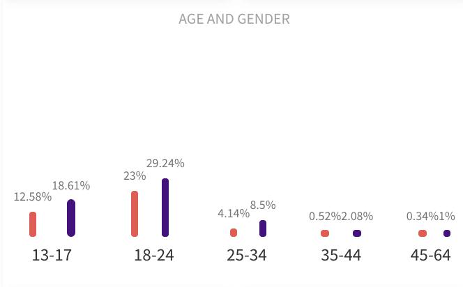 How modash shows audience demographics data