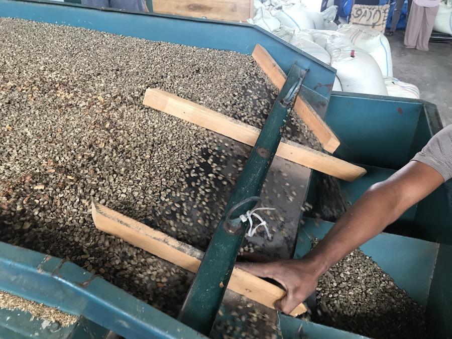Coffee grading local Indonesia Matahari gt