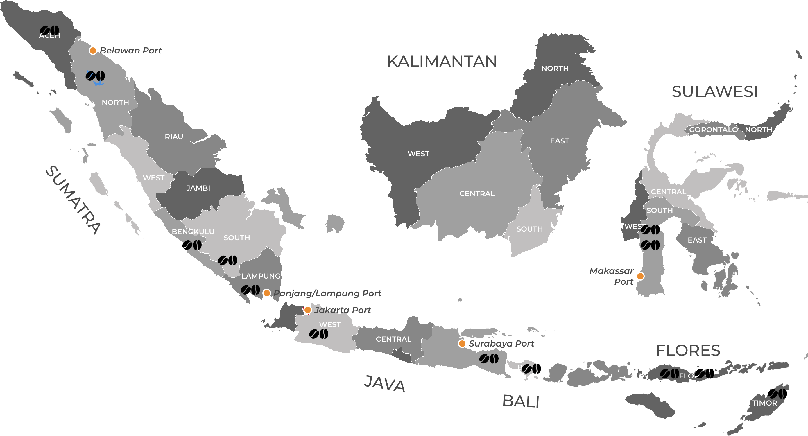 Matahari Indonesian coffee sourcing map