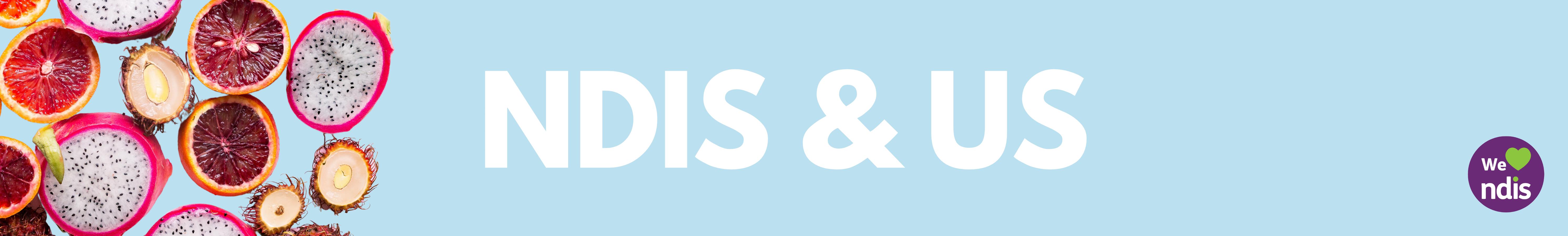 NDIS and US Hero Banner
