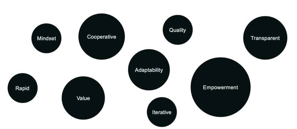 Some commonly used terms to describe Agile