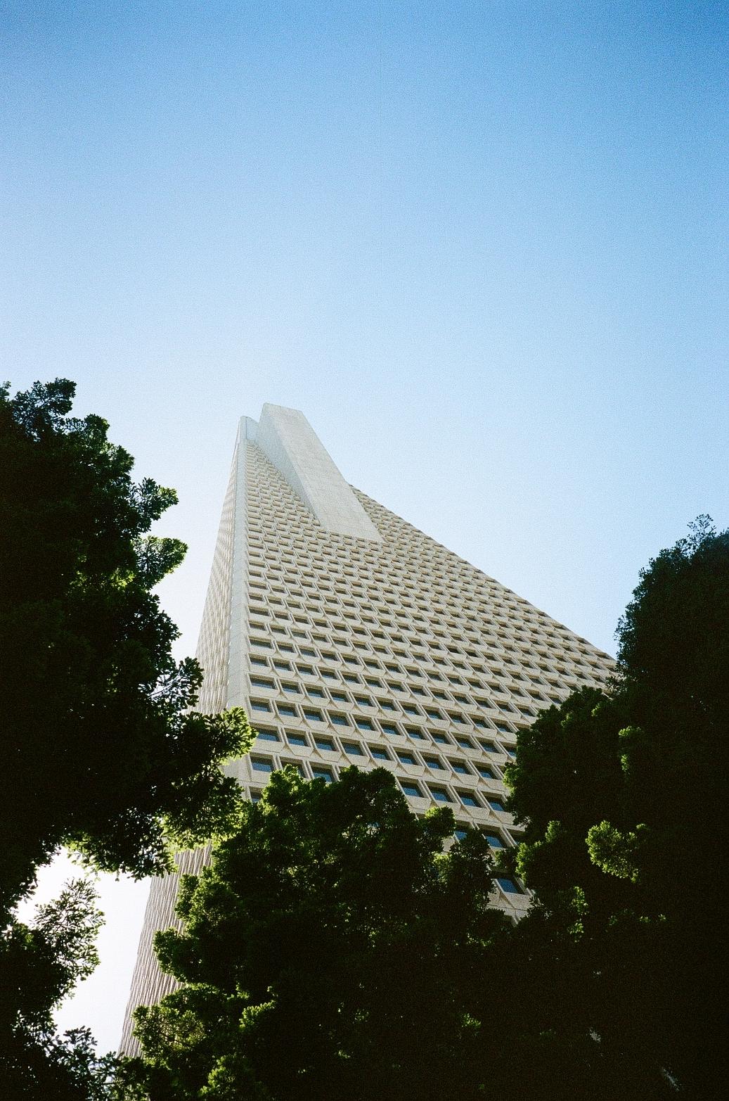 Transam building in the sky film photo in SF