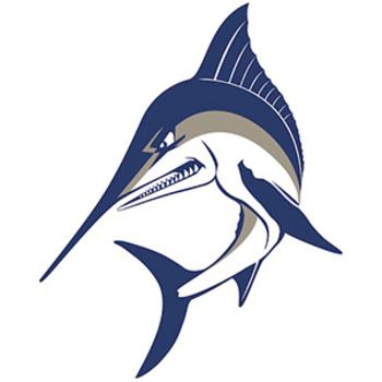 VA Wes Logo