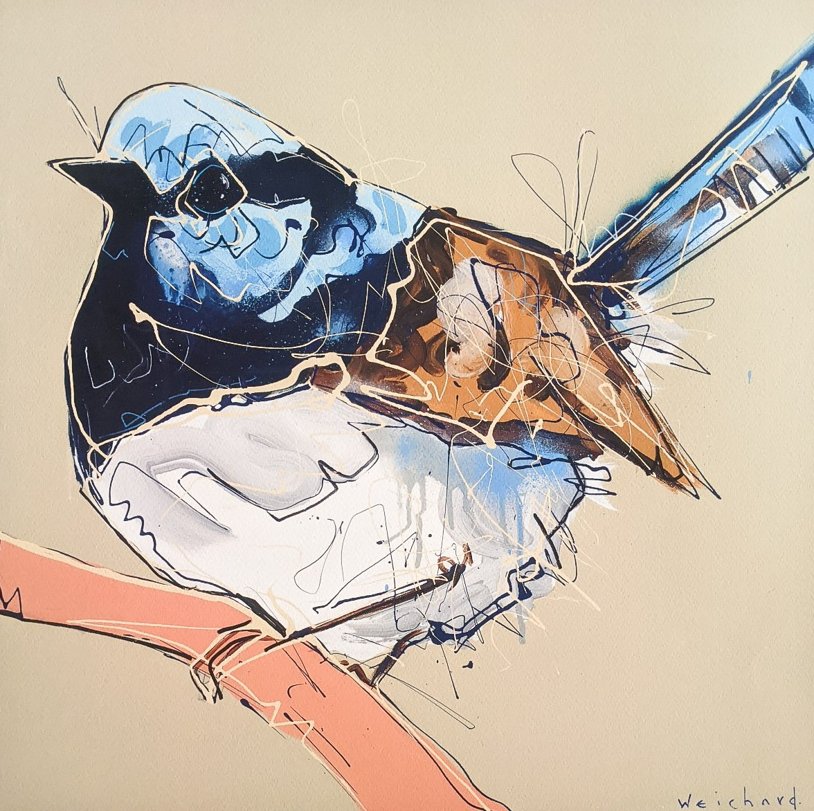 Balanced in Blue - Limited Edition Wren Bird Print - Aidan Weichard - Native Bird Art