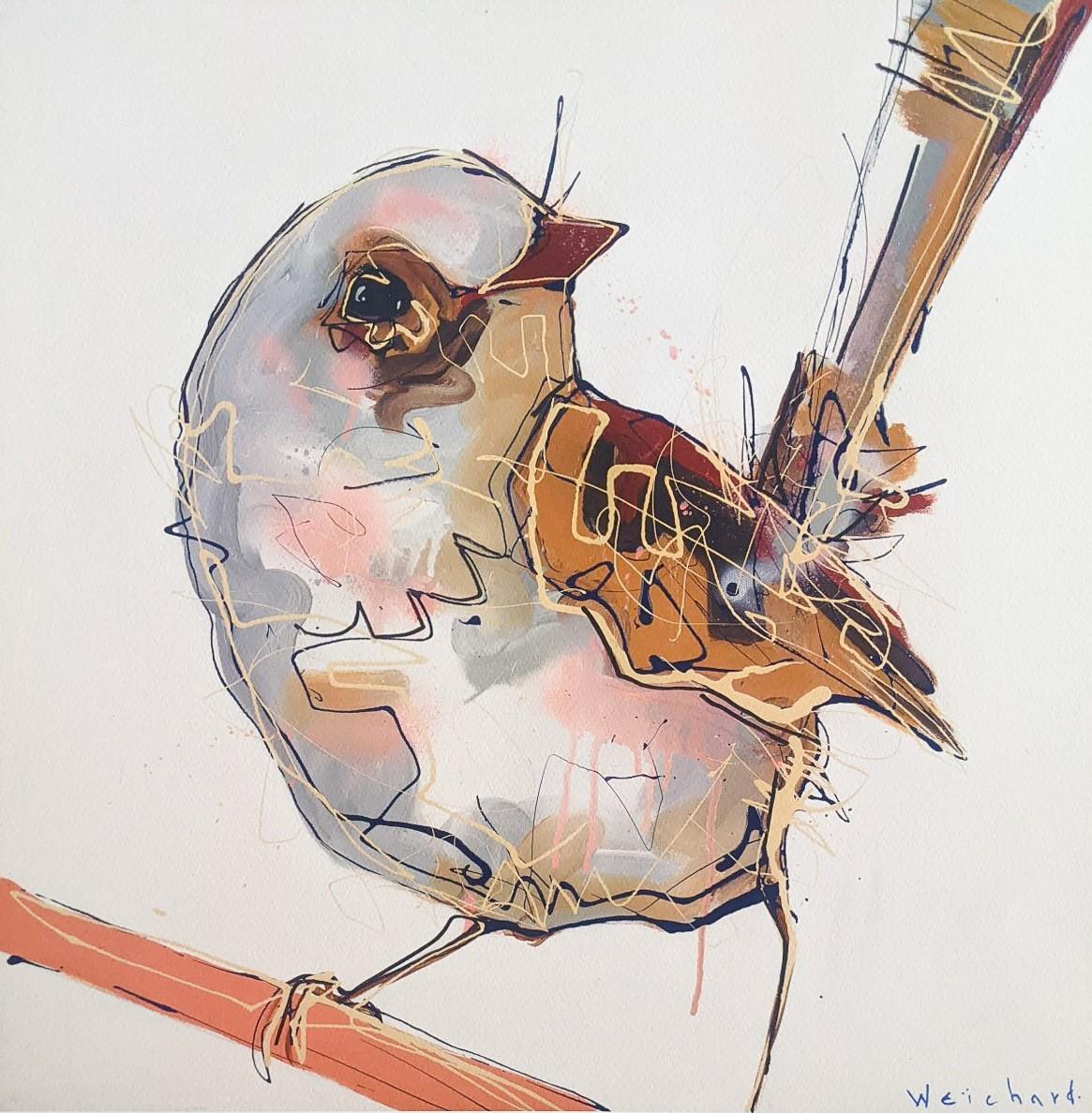 Ochre Gaze - Limited Edition Wren Bird Print - Aidan Weichard - Native Bird Art
