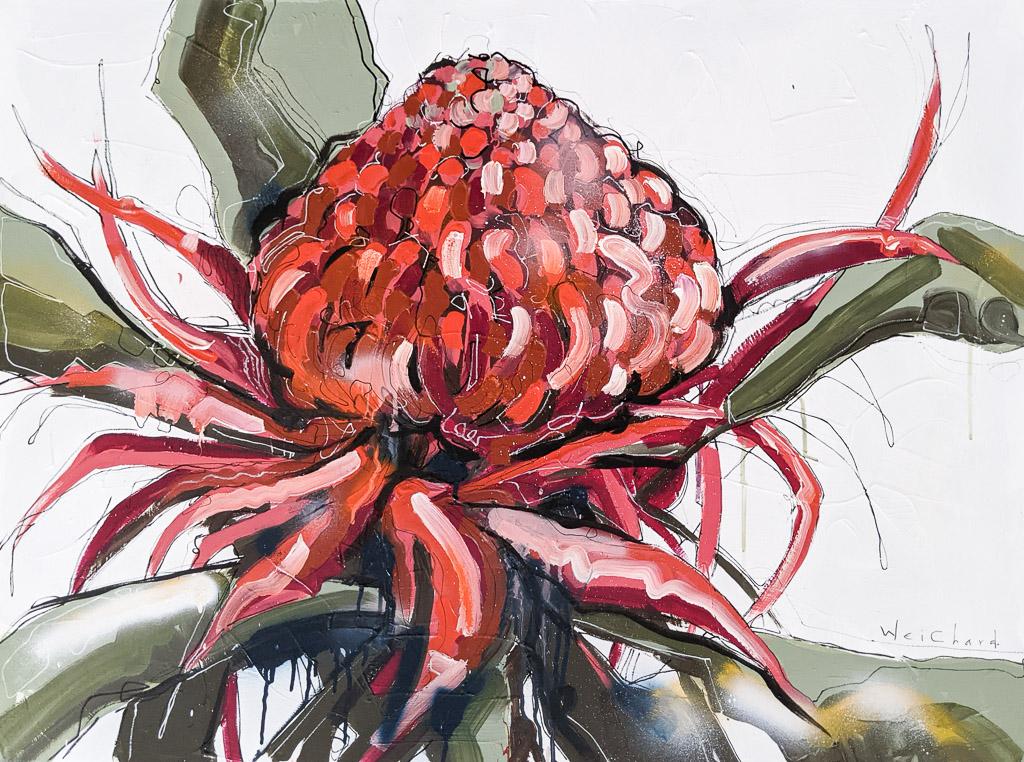 Wild Waratah - Aidan Weichard Art- Original Painting - Australian Native Plant