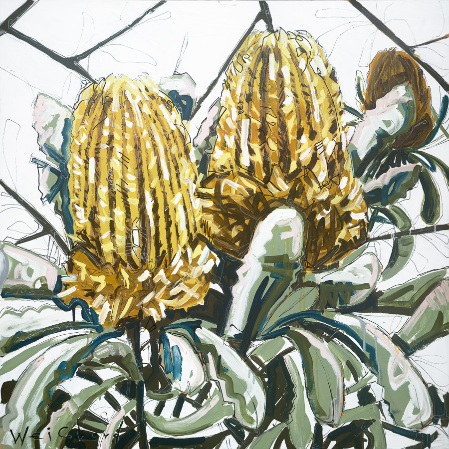 Aidan Weichard Art - Melbourne Australian Artist - Limited Edition Print - Native Plant Banksia Flower