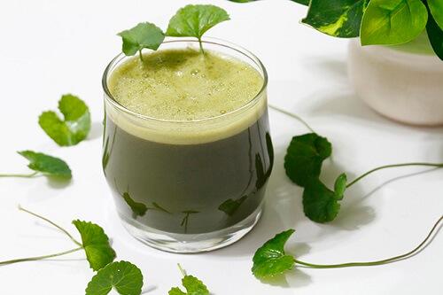 Uống sinh tố rau má