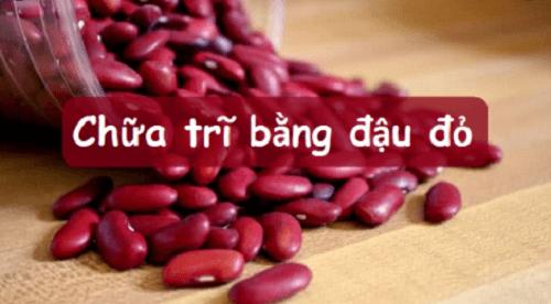 Đậu đỏ to chữa bệnh trĩ