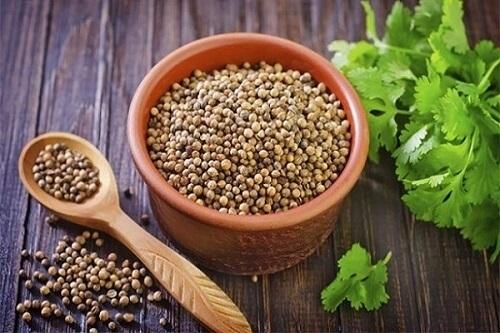 Đắp hạt mùi chữa bệnh trĩ