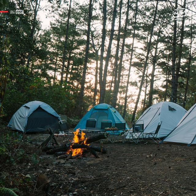 """Tất tần tật về cắm trại sang chảnh - trào lưu """"ngủ lều"""" đang hot nhất Đà Lạt, loạt sao Vbiz cũng phải mê tít - Ảnh 13."""