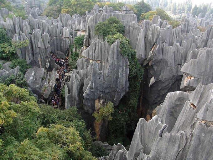 Shillin chia thành nhiều khu rừng nhỏ hơn với các hang động, thác nước, ao, hồ... và đặc biệt có một con sông ngầm chảy sâu bên dưới những ngọn núi khổng lồ. Ảnh: Jaime S. Sincioco/Twitter
