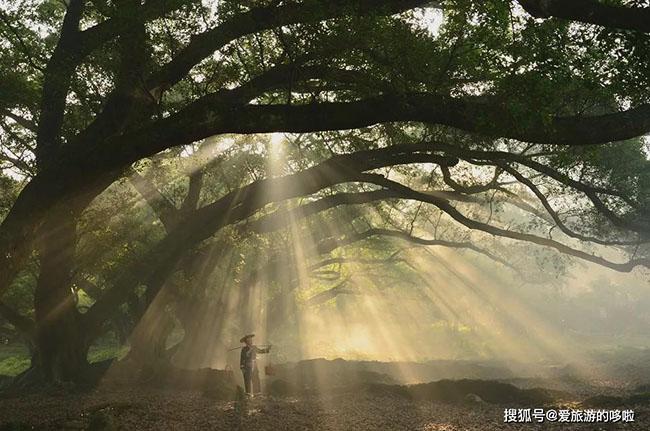 """6 địa điểm tuyệt đẹp ở Trung Quốc có thể """"chữa bệnh"""" cho những người đang bị """"cuồng chân"""" sau đợt cách ly - 7"""