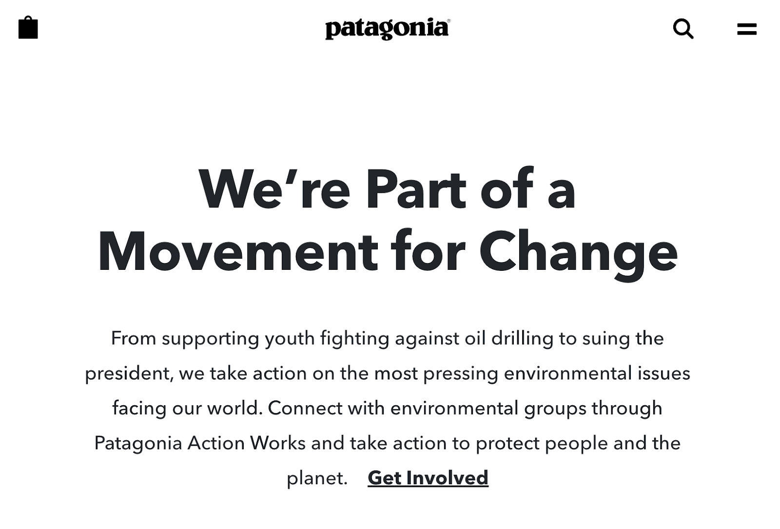 Patagonia challenges category conventions by fighting climate change