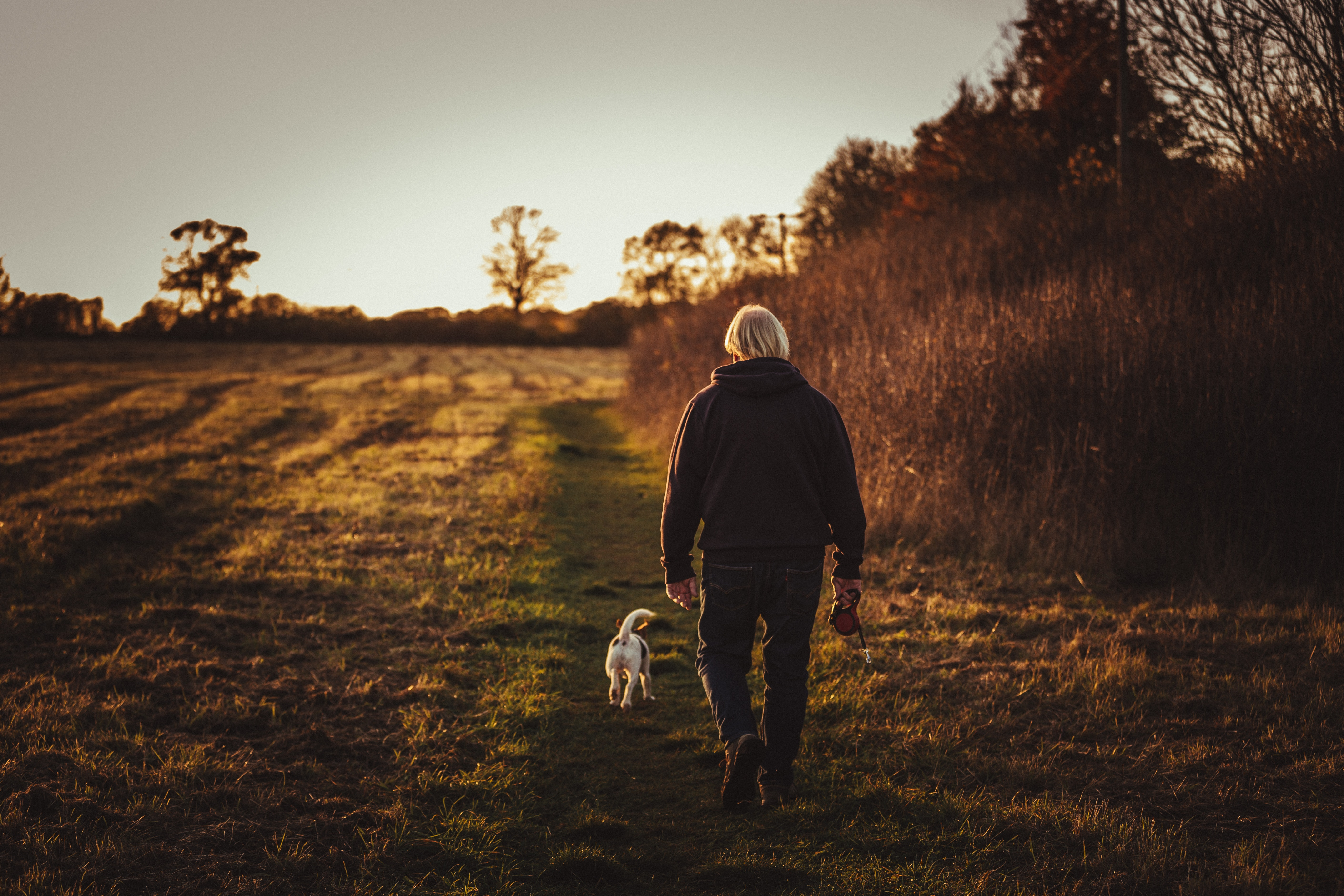 Mężczyzna spacerujący z psem po polu jesienią.