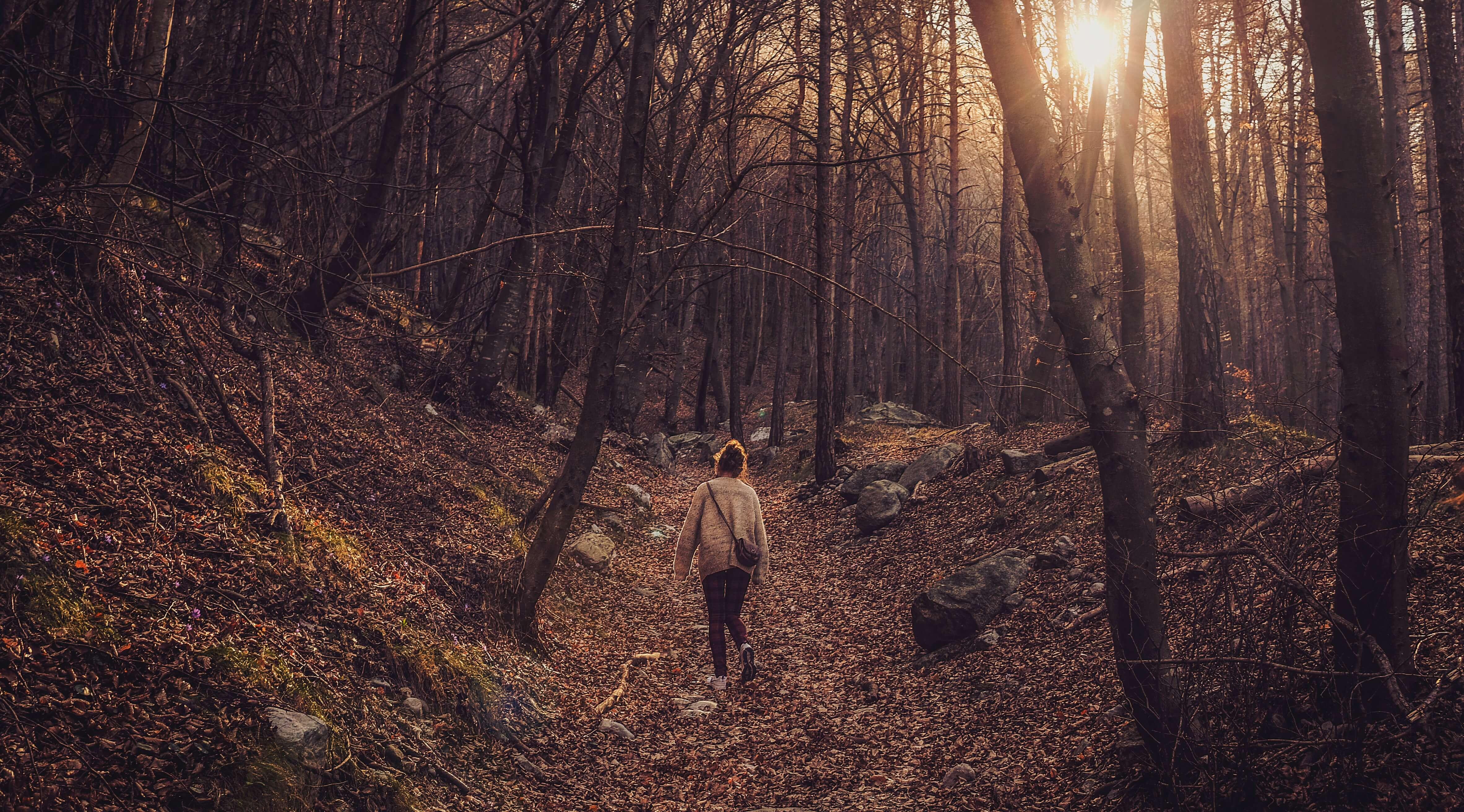 Kobieta spacerująca po lesie.