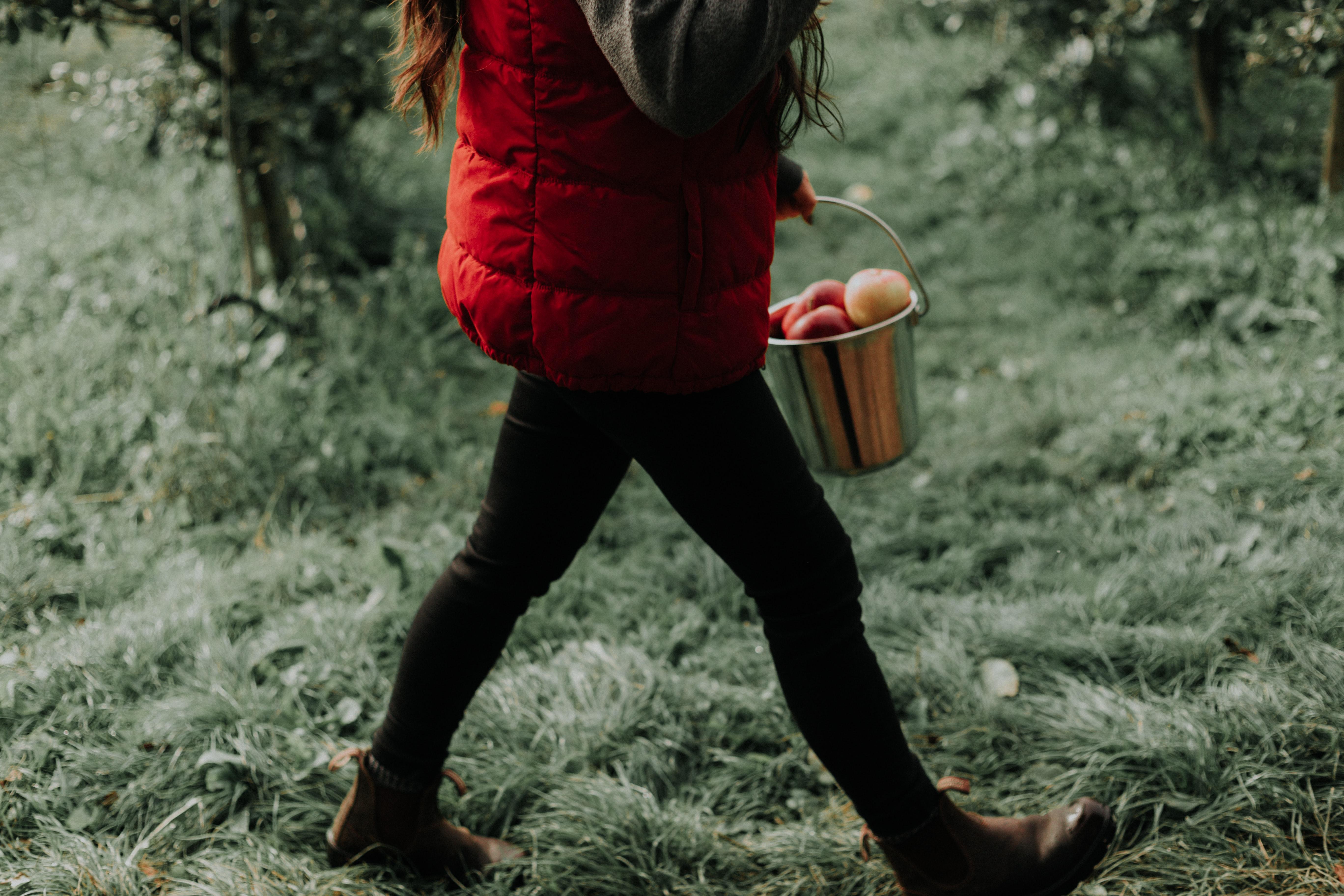 Kobieta niosąca wiaderko pełne jabłek.