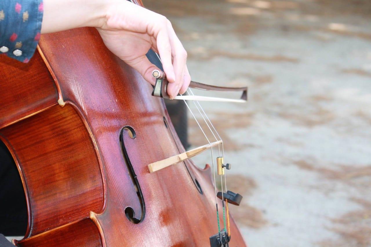 Close up of violin