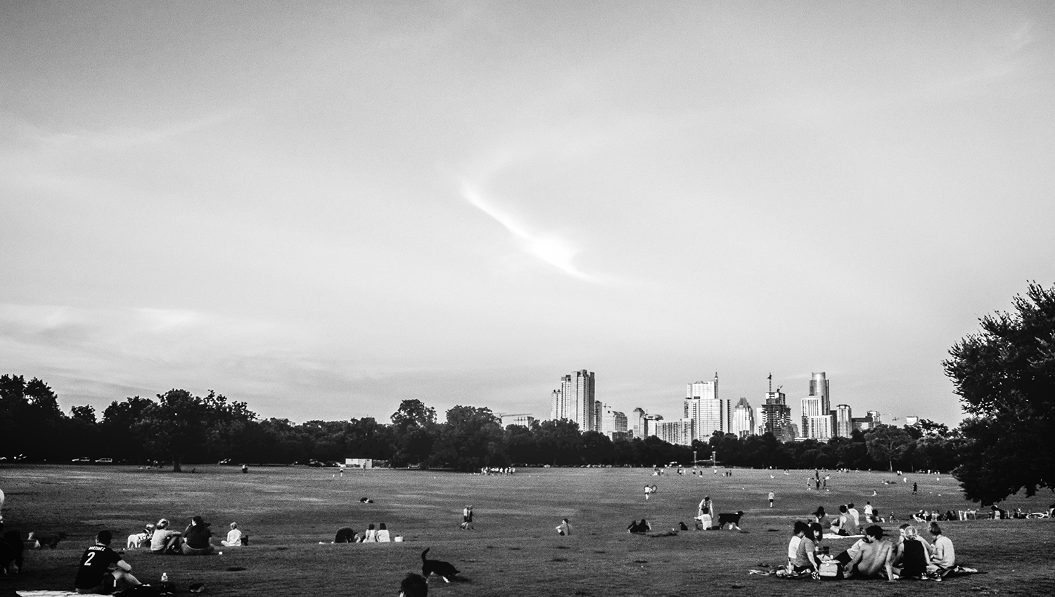 Black and white image of Zilker Park in Austin.
