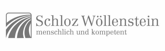 Logo Schloz Wöllenstein