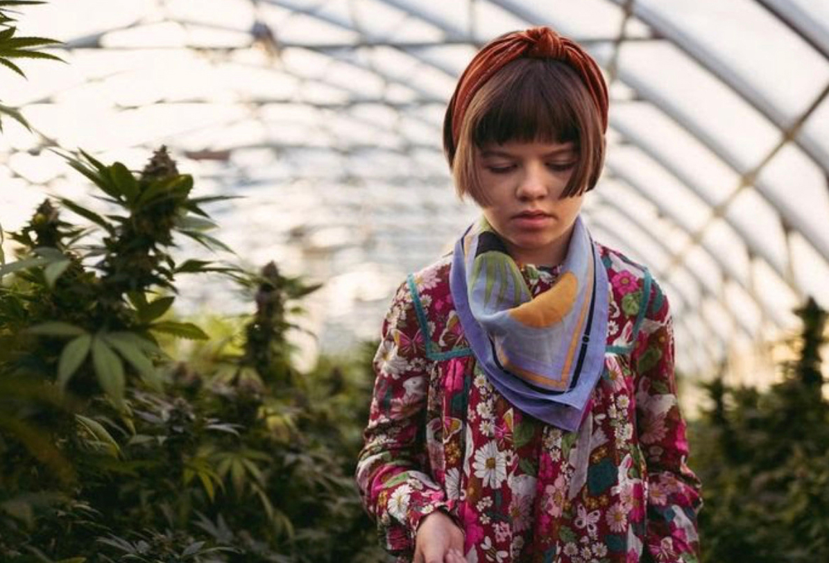 How one little girl changed the cannabis industry for good.