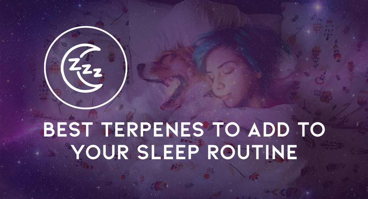 Terpenes are the compounds within cannabis that give them their oh so lovely flavor and scent profiles. Find out which one's are best for inducing sleep.