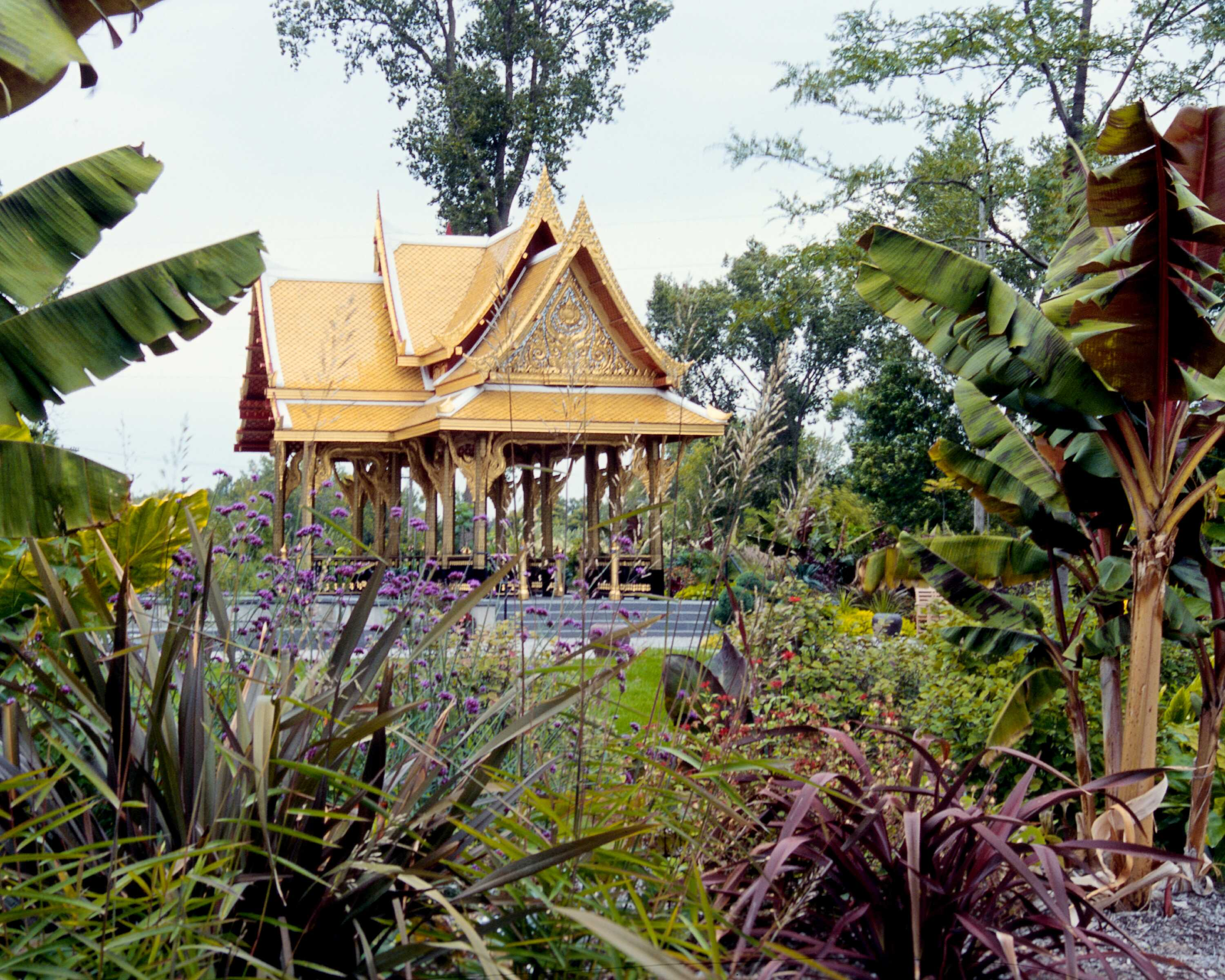 The Thai Garden showcases a gifted sala, or pavilion, with a custom stone-lined reflecting pool surrounding the pavilion platform and a carefully curated selection of plant material to evoke the lush tropical landscapes of Thailand.