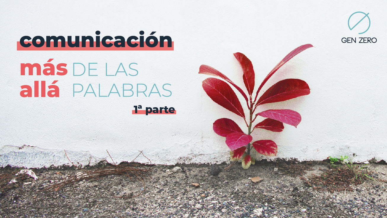COMUNICACIÓN - MÁS ALLÁ DE LAS PALABRAS 1